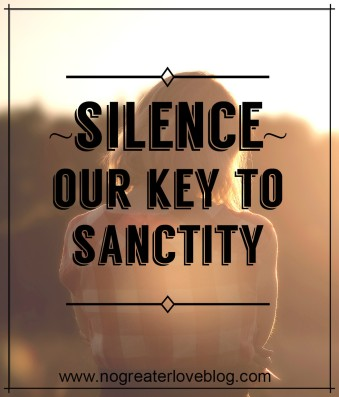 Silence, Our Key to Snactity