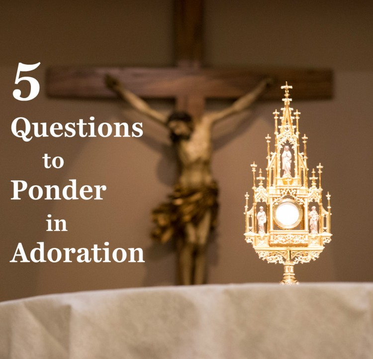 5 Questions to Ponder in Adoration